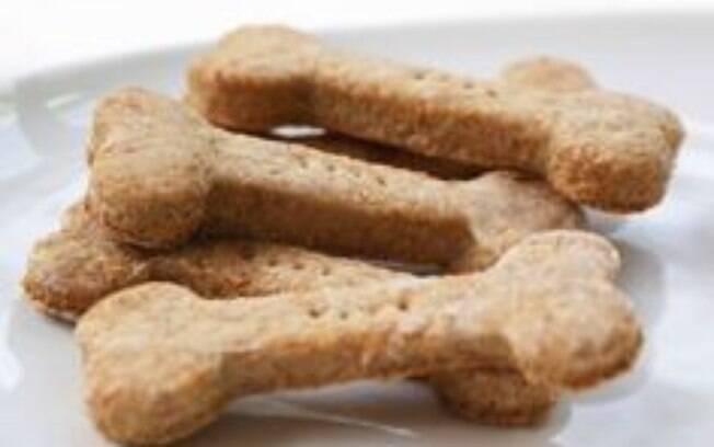 Saiba alguns erros para não cometer na alimentação do pet