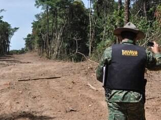 Queda de 70% na taxa de desmatamento da Amazônia nos últimos anos é fruto de várias ações bem-sucedidas que combinaram políticas de comando e controle e intervenções sobre as cadeias de soja e carne