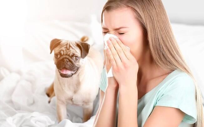Os testes de alergia não são exclusivos para humanos, animais também são sucetíveis a  essas doenças.