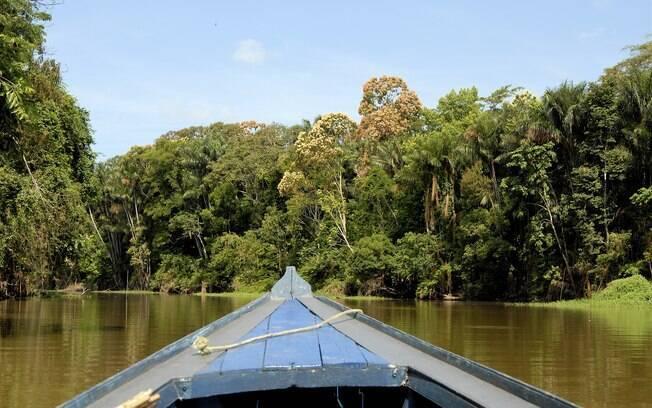 Em canoas, os turistas realizam passeios pelos igarapés e pesca de piranhas