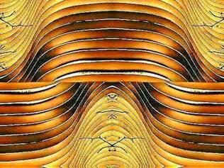 Trabalho de Aragão se inspira nas formas do Edíficio Niemeyer