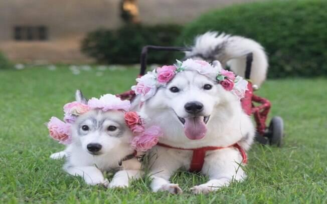 Maya e sua amiga Mamon