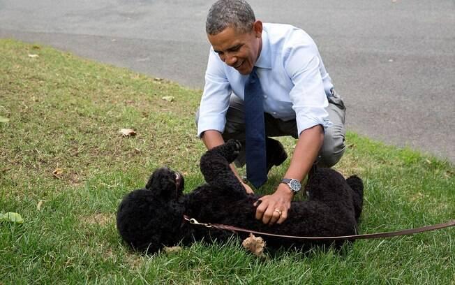 Barack Obama sempre é visto brincando com seus adoráveis cães, Bo e Sunny