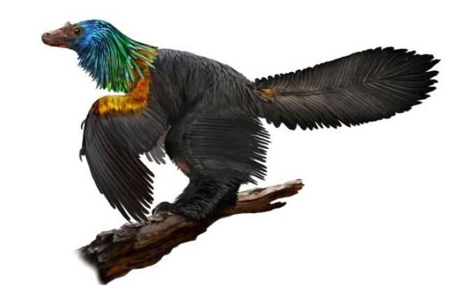 O dinossauro era um predador, possuía  uma cabeça de Velociraptor e dentes afiados que lhe permitiam caçar