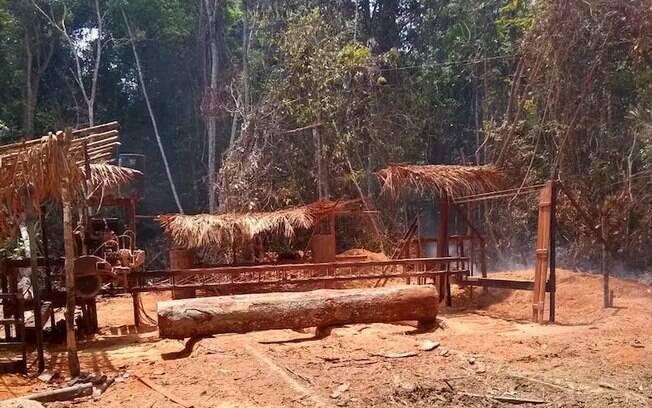 Trabalhadores foram encontrados em serraria em local de extração de madeira