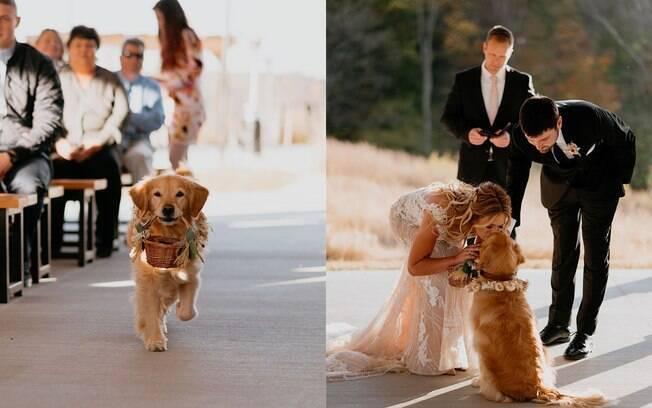Gabby carregou as alianças no casamento dos donos