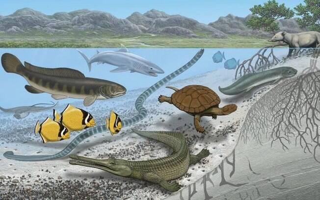 Concepção artística de animais que viviam no mar que cruzava o Saara