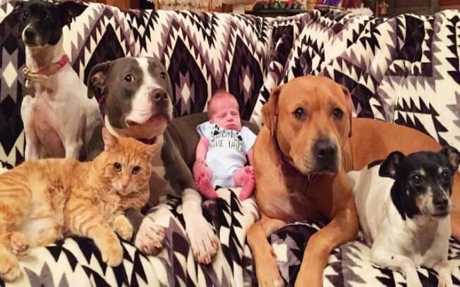 O recém-nascido Sonny e seus bichinhos