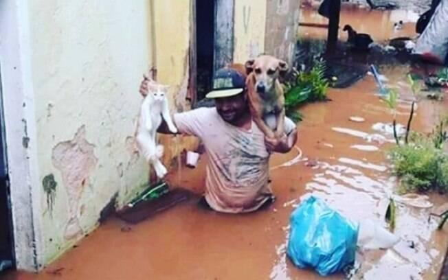 Muitas famílias que têm animais de estimação perderam suas casas