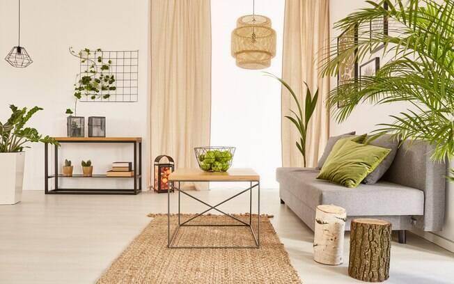 Quer adotar plantas na decoração e está em busca de inspirações? Confira algumas ideias para adotar nos cômodos da casa