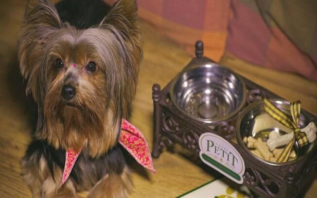 O Petit Casa da Montanha tem atendimento personalizado para pets e humanos