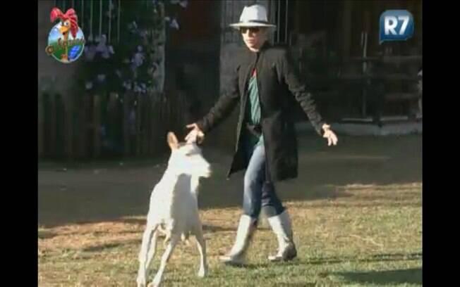 Anna Markun leva baile das cabras
