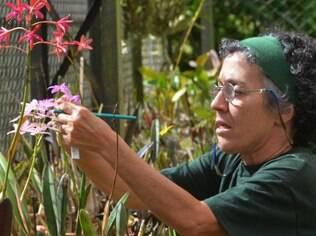 Maria do Rosário não hesitou em largar as algas marinhas para cuidar das orquídeas