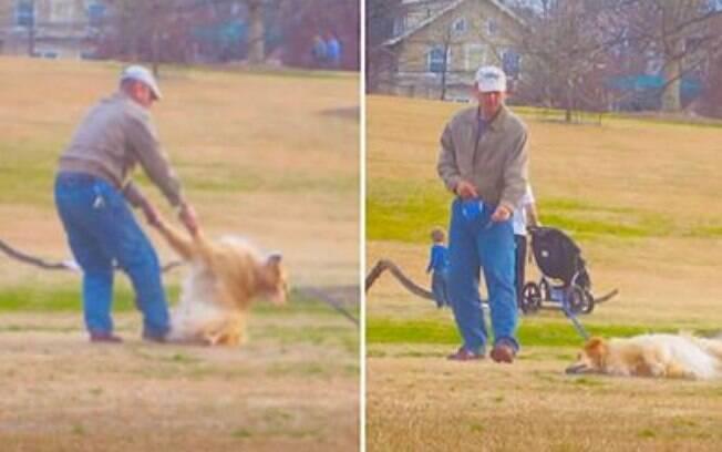 Cachorro se fingindo de morto pra ver se assim conseguia ficar mais tempo brincando no parque.