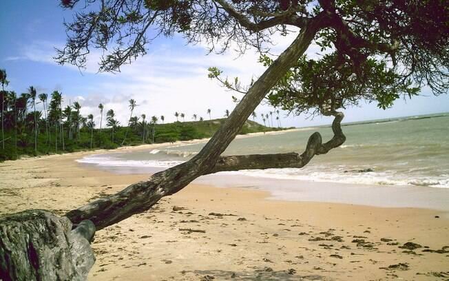 Praia do Moreira, em Cumuruxatiba