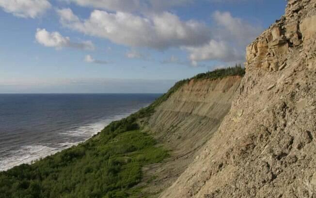 Fóssil foi achado por pesquisador em um penhasco no deserto remoto do noroeste russo com matéria orgânica ainda intacta