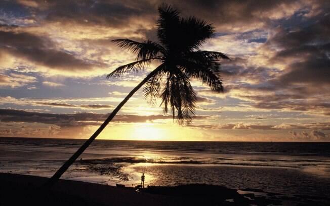 10 motivos para ir à praia do forte destinos nacionais ig