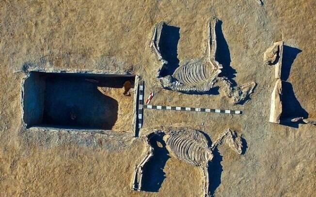 Dois cavalos foram achados junto com casal 'Romeu e Julieta' da Idade do Bronze em região Karaganda, no Cazaquistão