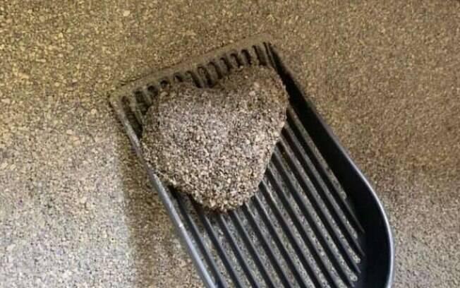Xixi em formato de coração