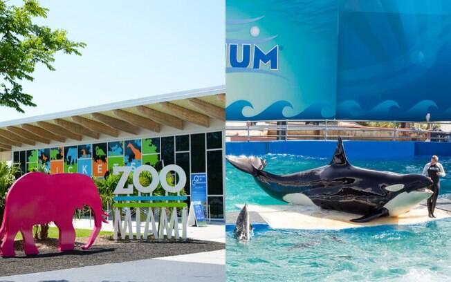 zoológico e aquário de miami