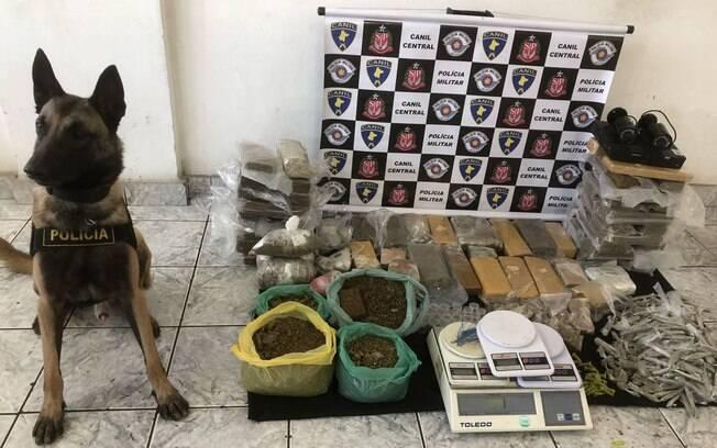 Canil da PM apreende mais de 50 quilos de drogas em duas ocorrência em São Paulo