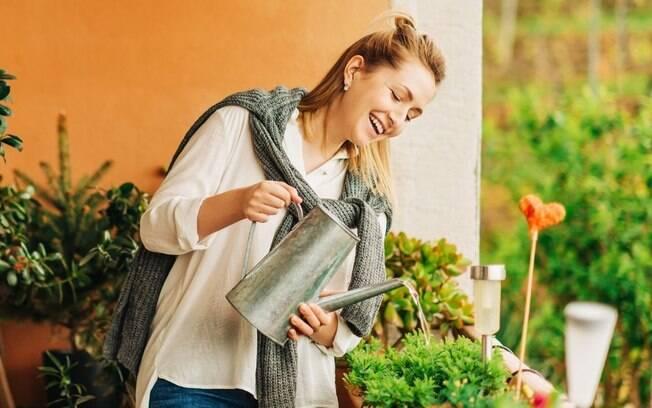 5 dicas para cuidar do pomar em apartamento