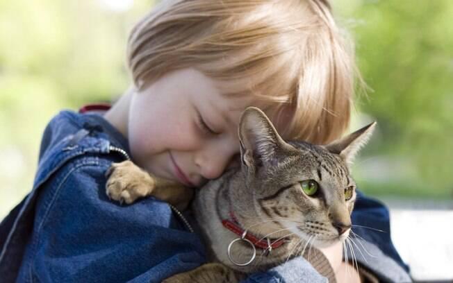 Quanto maior a conexão da criança com o bichinho, maior será a necessidade de acolhimento e explicação dos pais