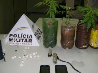 Pés de maconha foram encontrados na casa do suspeito