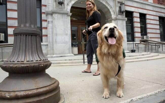 Rosie passeia com um assistente social em frente ao tribunal