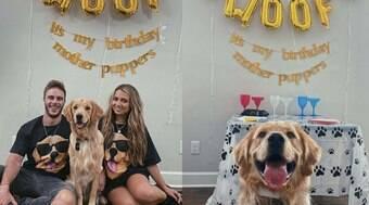 Cachorro ganha festa surpresa ao completar 1 ano de vida