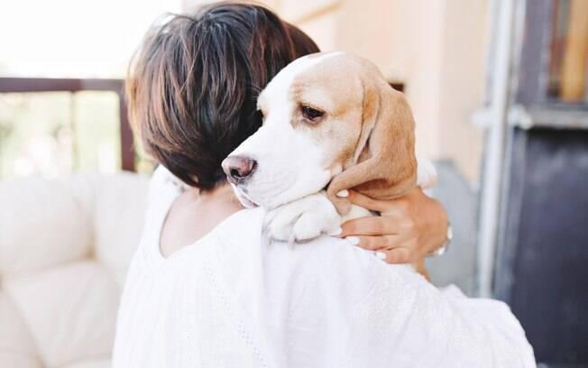 Uma forma efetiva de combater a depressão canina é dando mais atenção ao bichinho. Reserve um tempo para brincar com ele e matar toda a saudade do dia