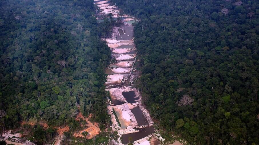 Floresta amazônica vem sendo devastada no maior ritmo dos últimos 10 anos