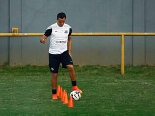 Leandro Damião se prepara para assumir o comando do ataque santista
