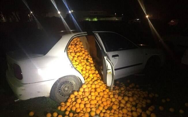 Segundo polícia, houve perseguição até encurralarem os suspeitos e apreenderem quantidade alarmante de laranjas