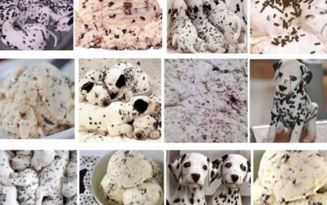 Dálmatas ou sorvete de flocos