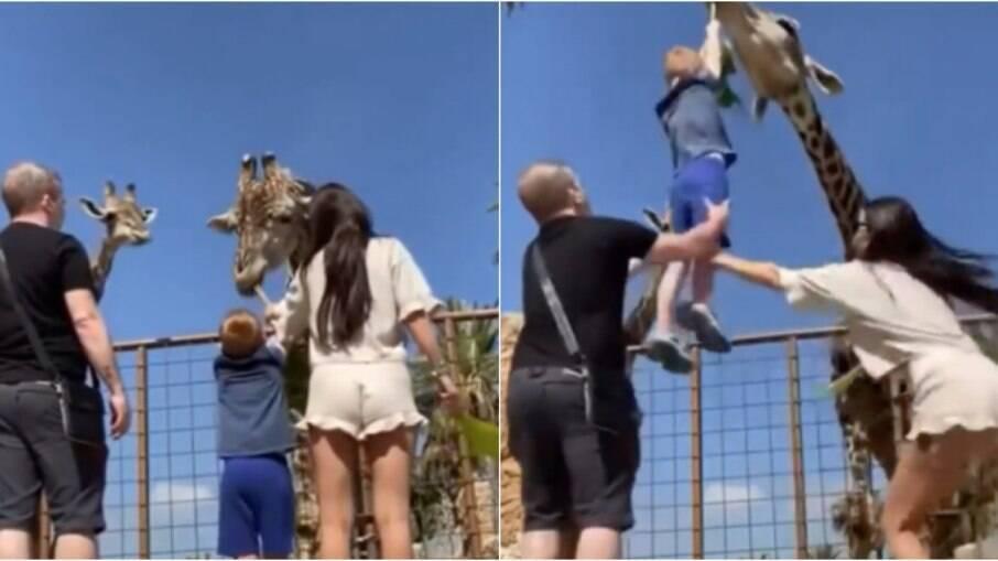 Criança foi puxada pela girafa