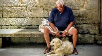 Animais de estimação são excelentes companhias para idosos