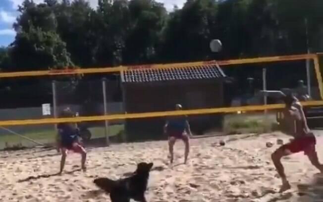 O ator postou vídeo jogando vôlei com sua companheiro Baltha