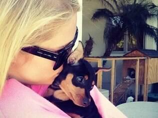 Paris Hilton com Dóllar