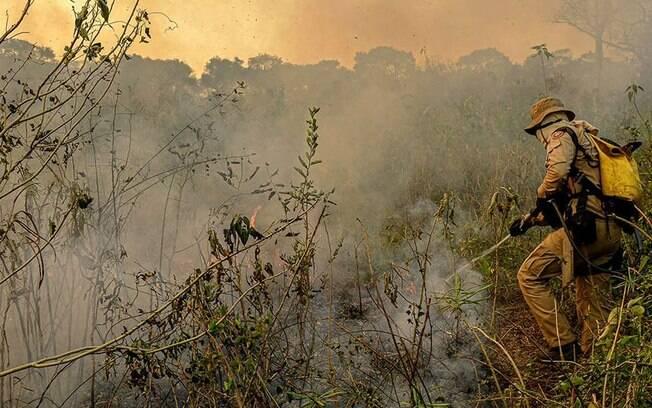 O colegiado vai questionar o ministro sobre as medidas adotadas pelo governo para conter e prevenir queimadas no bioma