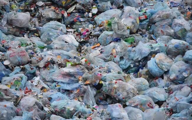 Proibição do uso, importação e comercialização das sacolas entrou em vigor no último sábado