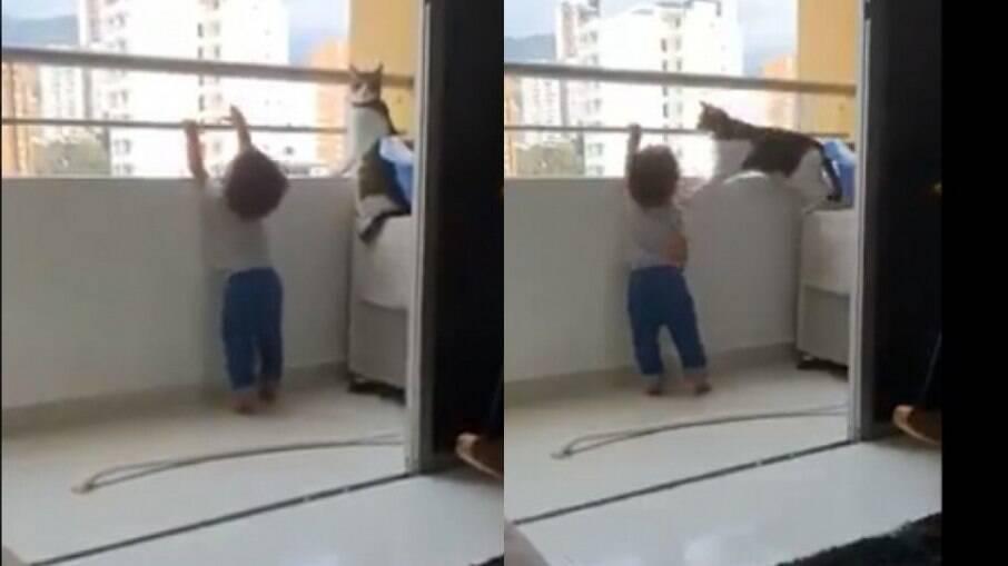 Gato não deixa criança se aproximar da sacada