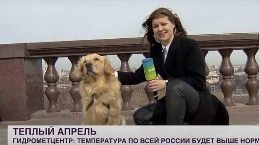 Cachorro rouba o microfone de repórter durante transmissão ao vivo