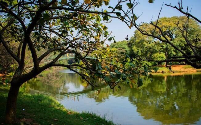 O Parque do Ibirapuera é um dos mais conhecidos em São Paulo e é ótimo para fazer um piquenique pelo lago
