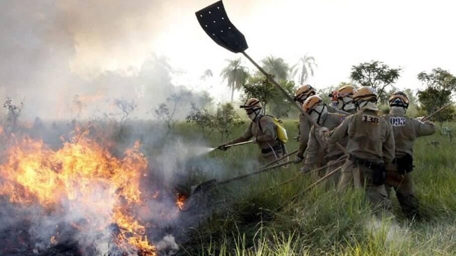 Trabalho dos brigadistas são essenciais para a combate dos incêndios no Pantanal.