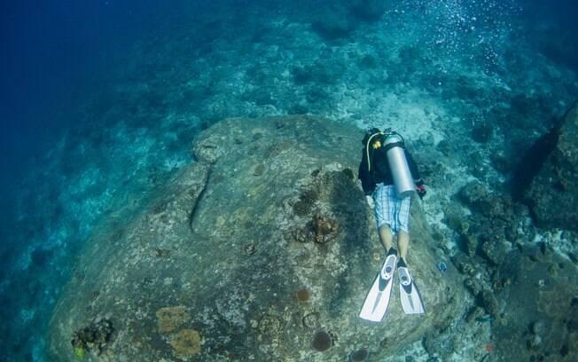 Mergulhe em Poor Knights e descubra a beleza do fundo do oceano