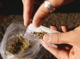 Maconha: pesquisa brasileira mostrou que quase 4 em cada 10 usuários são dependentes da droga