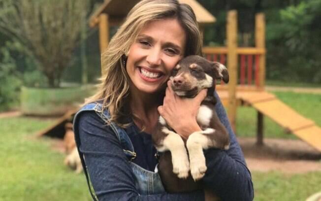 Luisa Mell: confira as polêmicas em que a ativista se meteu para defender os animais