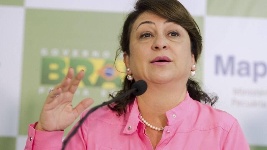 Senadora Kátia Abreu (PP-AL)