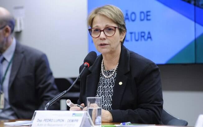 Liberação de novos agrotóxicos não traz riscos, garante Tereza Cristina